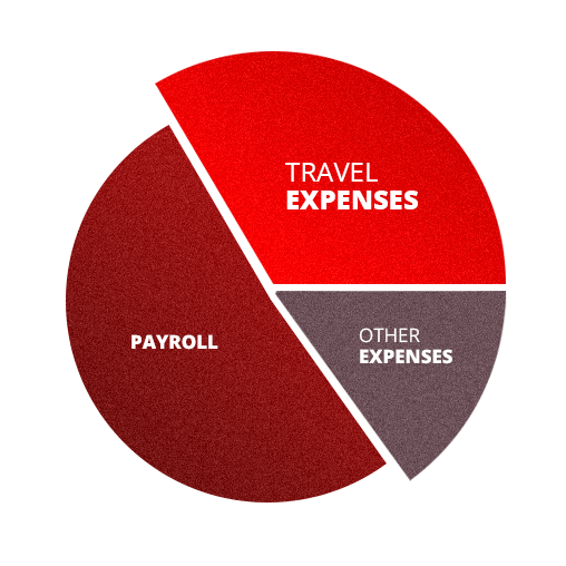 Corporate Travel Management Solutions, expenses pie chart